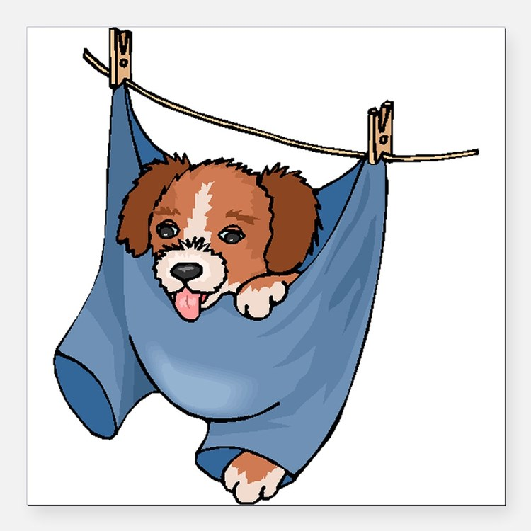 """Puppy On Clothesline Square Car Magnet 3"""" x 3"""""""