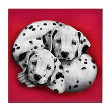 Dalmatian Dogs Hug Tile Coaster