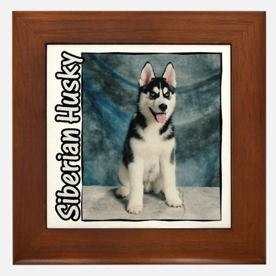 Siberian Husky Puppy Framed Tile