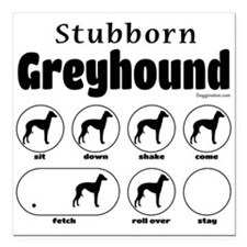 "Stubborn Greyhound v2 Square Car Magnet 3"" x 3"""