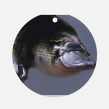 platypus Ornament (Round)