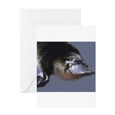 platypus Greeting Cards