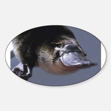 platypus Decal