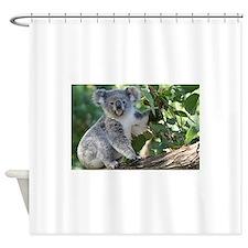 Cute koala Shower Curtain