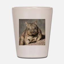 wombat Shot Glass