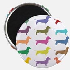 Colorful Dachshunds Magnets