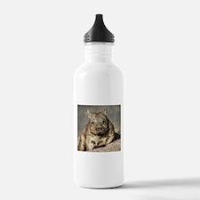 wombat Water Bottle