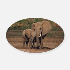 elephants Oval Car Magnet
