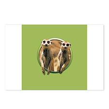 Meerkats Postcards (Package of 8)