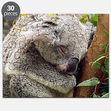Sleepy Koala Puzzle