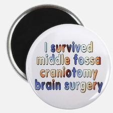 Middle fossa craniotomy - Magnet