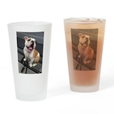 Bulldog Smile Drinking Glass