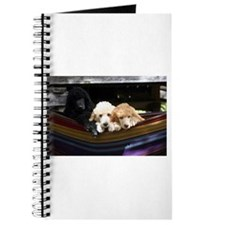 Standard Poodle Puppies Journal