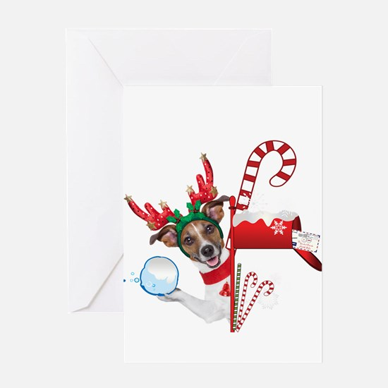 Christmas Funny Dog with Snowball Greeting Cards