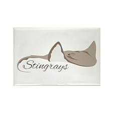 Sea Stingrays Magnets