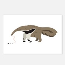 Anteater Ants Postcards (Package of 8)