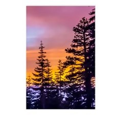 Evergreen Sunset Postcards (Package of 8)
