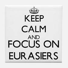 Keep calm and focus on Eurasiers Tile Coaster