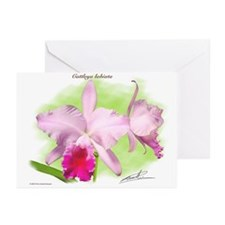 Unique Cattleya Greeting Cards (Pk of 10)