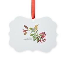 Cedar Waxwing And Berries Ornament