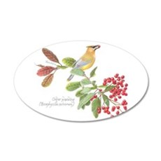Cedar Waxwing And Berries 35x21 Oval Wall Decal