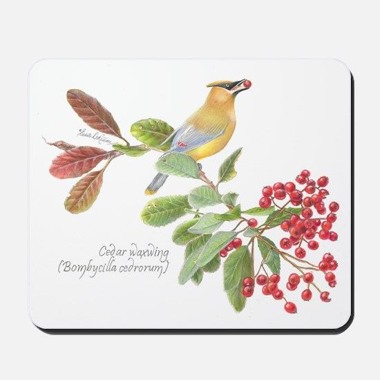 Cedar Waxwing and berries Mousepad