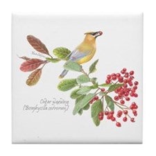 Cedar Waxwing And Berries Tile Coaster