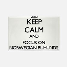 Keep calm and focus on Norwegian Buhunds Magnets