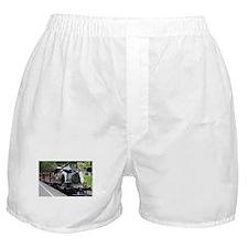 Steam engine, Victoria, Australia Boxer Shorts