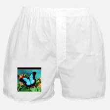 Blue Butterfly on Orange Lantana Flow Boxer Shorts