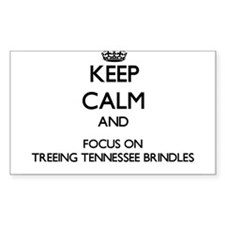 Keep calm and focus on Treeing Tennessee B Decal