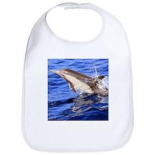 Dolphin Destination Bib