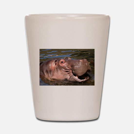 Happy African Hippo in water Shot Glass
