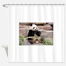 Panda bear at zoo Shower Curtain