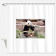 Panda bear bathroom accessories decor cafepress for Zoo bathroom decor