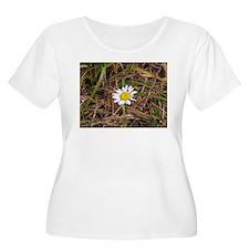 Unique Daisies T-Shirt
