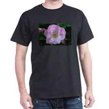 Camellia flower in bloom T-Shirt