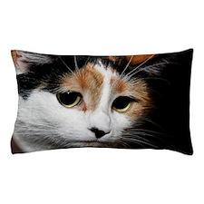 Calico Cat Pillow Case