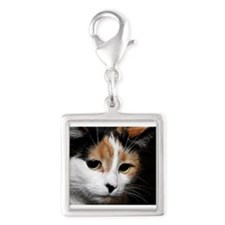 Calico Cat Charms