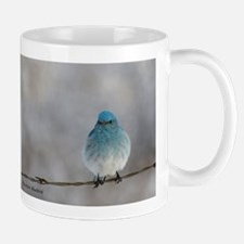 Mountain Bluebird Mugs