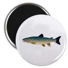 Dolly Varden Bull Trout Char Magnets
