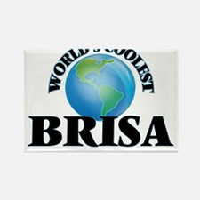World's Coolest Brisa Magnets