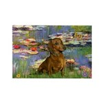 Lilies & Dachshund Rectangle Magnet (10 pack)