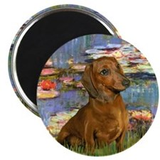 "Lilies & Dachshund 2.25"" Magnet (10 pack)"