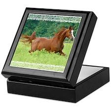 Galloping Arabian Horse Keepsake Box