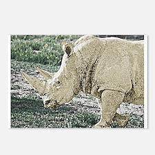 wc-rhino-01.jpg Postcards (Package of 8)