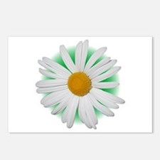 Large Daisy Postcards (Package of 8)