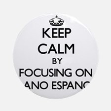 Keep calm by focusing on Alano Es Ornament (Round)