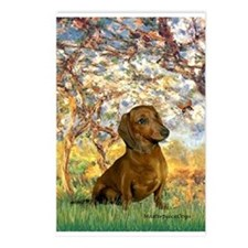 Spring / Dachshund Postcards (Package of 8)