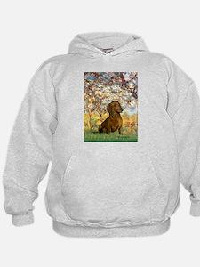 Spring / Dachshund Hoodie